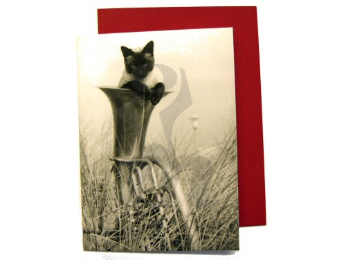 Siamese Cat and Tuba Card