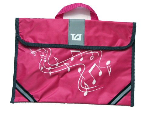 TGI Pink Music Carrier