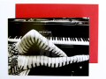 This black and white photo card features someones legs wearing piano style stockings, on a piano stool in front of a Bechstein piano.