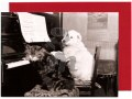 This card features a black and white photographic image of a cat and dog sitting at an upright piano with their paws on the keyboard!