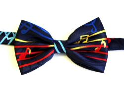 Multi Coloured Stave Bow Tie